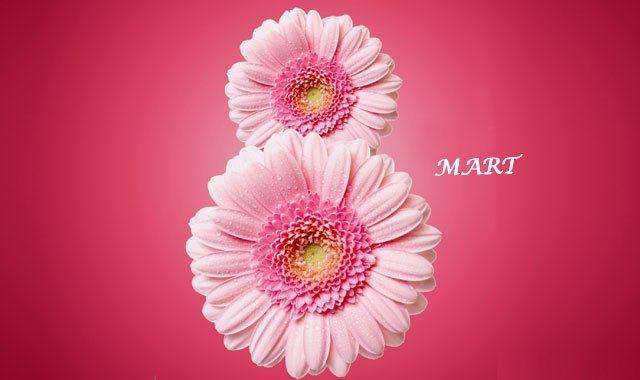Dünya kadınlar gününüz kutlu olsun!